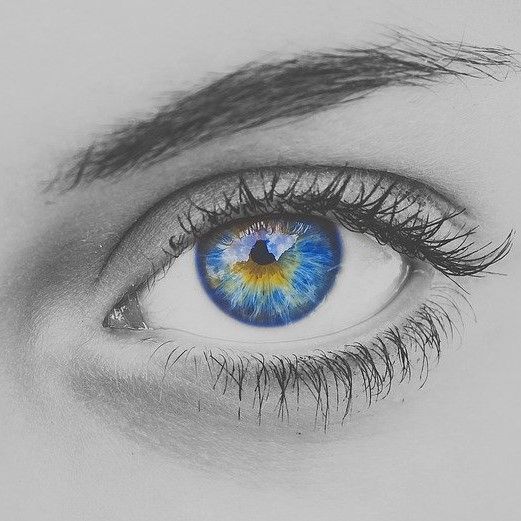 black and white eye with iris in color
